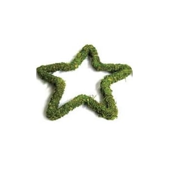 "12"" Padded Moss Effect Star"