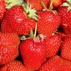 Cambridge Favourite Strawberries Carry 6 Pack