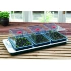 Big 3 Control Electric Propagator