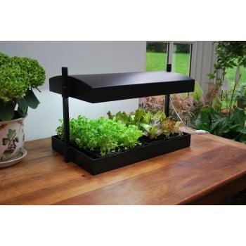 Garland Self Watering Tray Insert For Grow Light