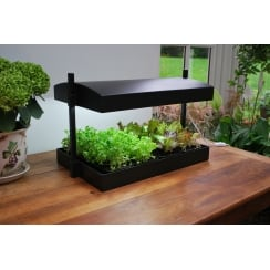 Self Watering Tray Insert For Grow Light