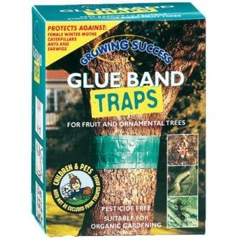 Growing Success Glue Band Traps 1.75m