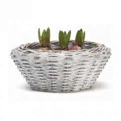 Hyacinth Low Basket 25 x 11cm