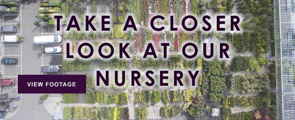 Nursery Footage