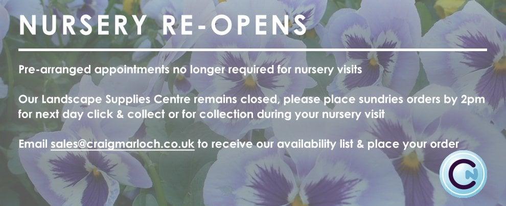 Nursery Re-Opens