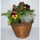 Round Brushwood Planter 12""
