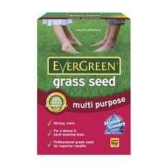 Evergreen Fast Grass Seed