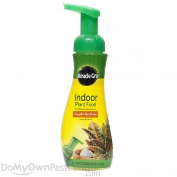 Scotts Miracle Gro Indoor Plant Food