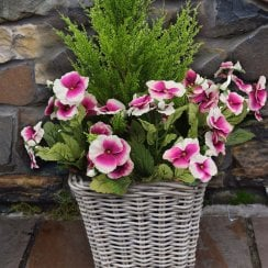 Pink & White Pansy Artificial Rattan Floor Planter 30cm
