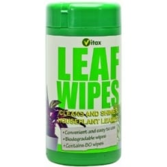 Leaf Wipes House Plant Care